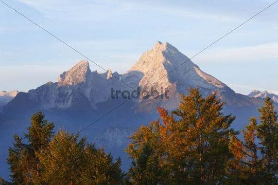 Watzmann mountain, in the morning, view from Kneifelspitze mountain near Berchtesgaden, Berchtesgaden Alps, Berchtesgadener Land district, Upper Bavaria, Germany, Europe