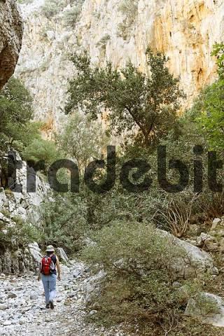 Kritsa Gorge Kritsas gorge, Crete, Greece