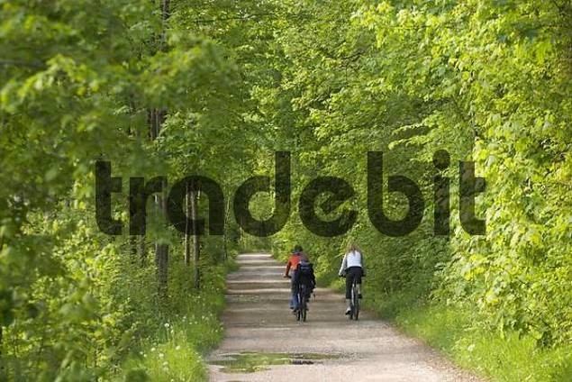 cyclists in forest near Munich - Germany