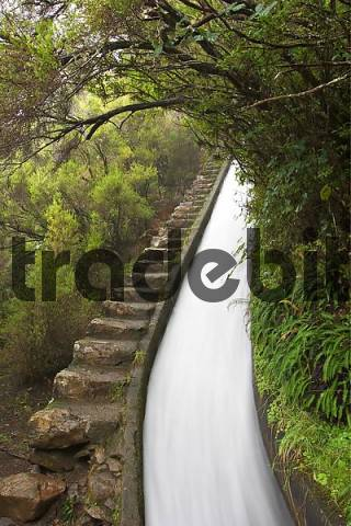 Levada do Alecrim near Rabacal - Madeira