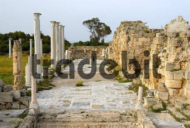 Ancient pillars Gymnasium and walls of the baths archaeological site Salamis North Cyprus