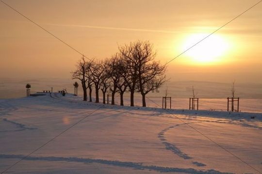 """Winter mood at the """"Sachsens Hiefel"""" viewing point, Rockau, Dresden, Schoenfelder Hochland, Saxony, Germany, Europe"""