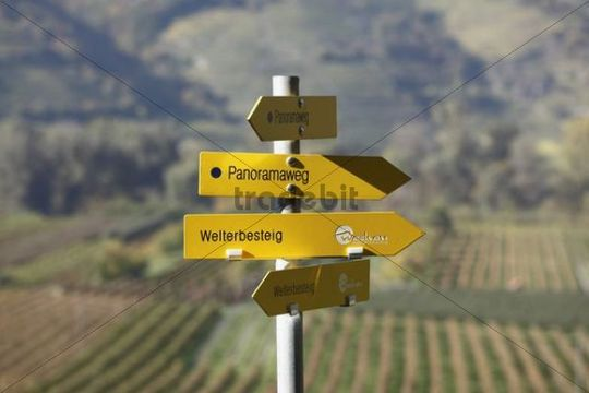 """Signpost, hiking trails, """"Panoramaweg"""", German for """"panoramic path"""" and Welterbesteig trail, Rossatz, Wachau valley, Mostviertel region, Lower Austria, Austria, Europe"""