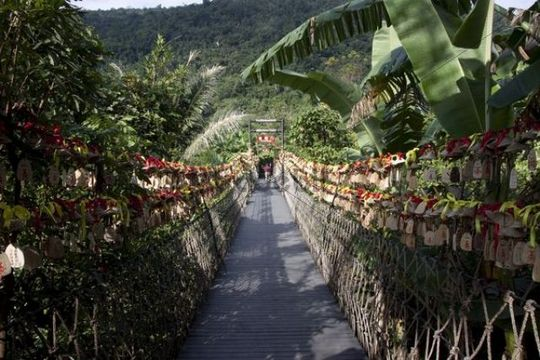 Suspension bridge amidst plants, Hainan Province, China, Asia