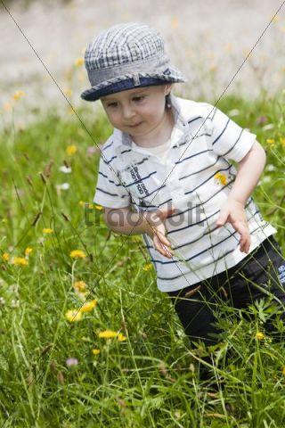 Little boy standing in tall grass