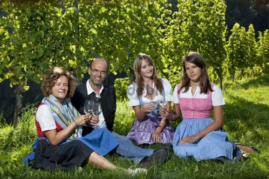 Young Styrian family sitting on a meadow holding wine glasses, Southern Styria, Styria, Austria, Europe
