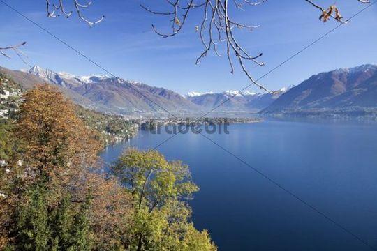 View over the Lago Maggiore to Ascona and Locarno, Ronco sopra Ascona, Ticino, Switzerland, Europe