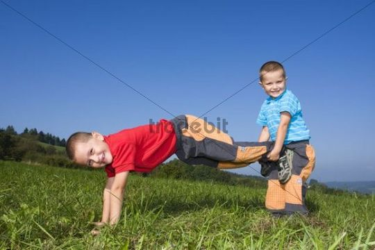 Boys, 6 and 4 years, playing in a meadow