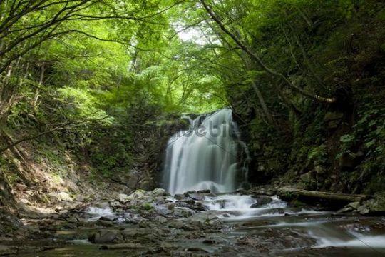 Waterfall, river, vegetation, Karuizawa, Nagano, Japan, Asia
