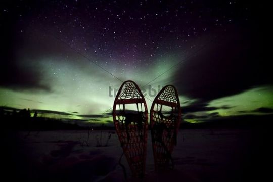 Silhouette of traditional wooden snow shoes, northern polar lights (Aurora borealis), curtains, green purple, near Whitehorse, Yukon Territory, Canada