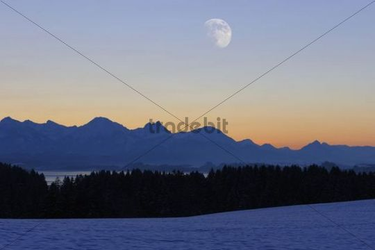 Tannheimer Berge mountains with Lake Forggensee near Fuessen, Allgaeu, Bavaria, Germany, Europe