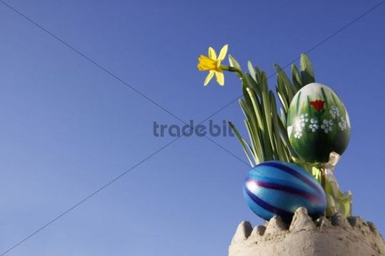 Easter decorations, daffodils and Easter eggs