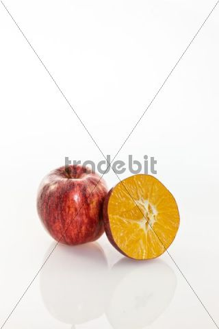 Symbolic image, genetically modified apple, apple and orange cloned together