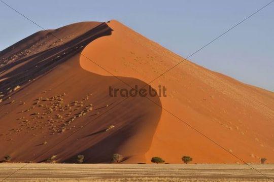 Sand dune in the morning light, near Sossusvlei, Namib Desert, Namib Naukluft Park, Namibia, Africa