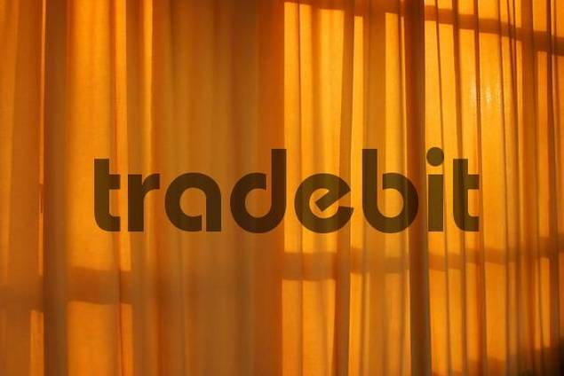 Sunlight behind a curtain