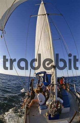 sailing to Green Island at the Barrier reef Queensland Australia