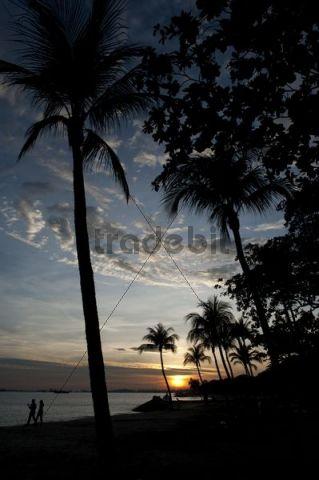 Beach, evening mood, East Coast Park, Singapore, South East Asia
