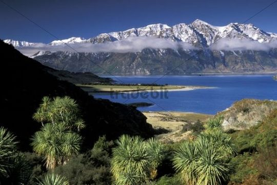 View from The Neck on Lake Hawea, Otago, South Island, New Zealand