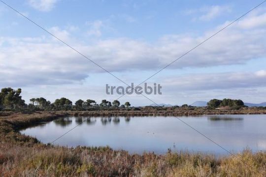 Salt evaporation pond, Salines de Levante, Majorca, Balearic Islands, Spain, Europe