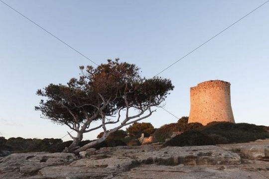 Cala Pi, Majorca, Balearic Islands, Spain, Europe