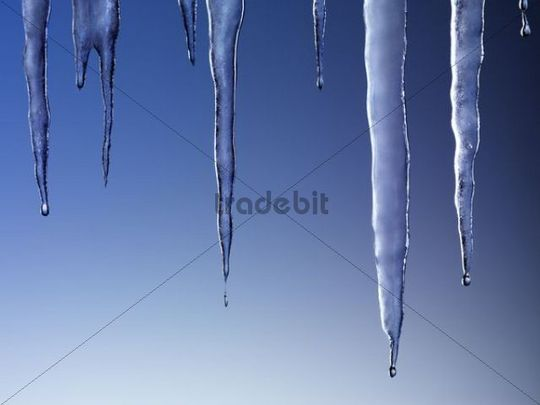 Melting icicles against blue