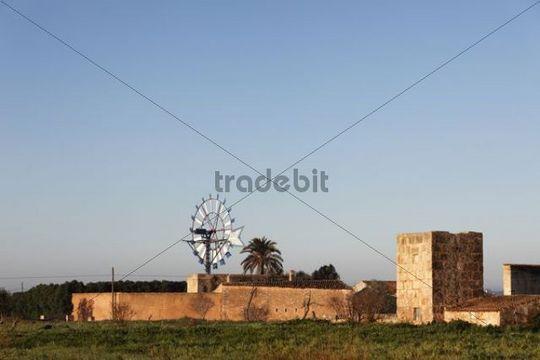 Windmill, Campos, Majorca, Balearic Islands, Spain, Europe