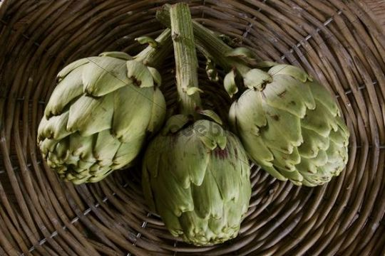 Three artichokes (Cynara cardunculus) in a basket
