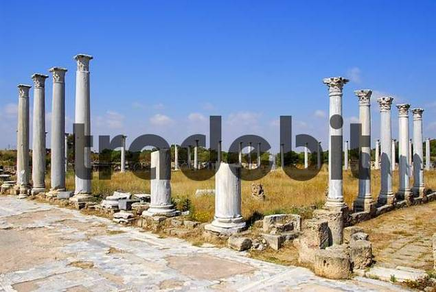 Ancient pillars Gymnasium archaeological site Salamis North Cyprus
