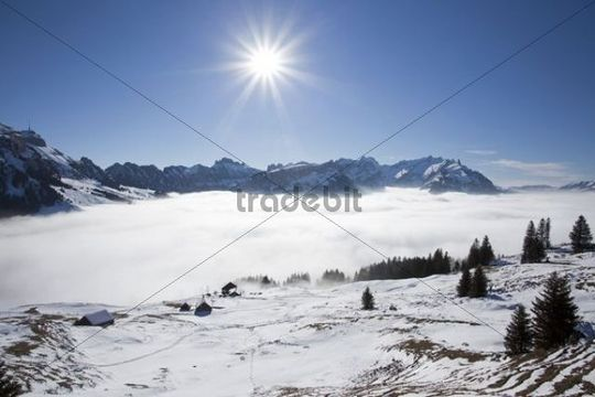 Alpstein massif with Mt Saentis, a layer of cloud and a mountain pasture covered in snow, Appenzell Alps, Swiss Alps, Switzerland, Europe