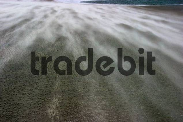 sandstorm, blowing sand on the beach