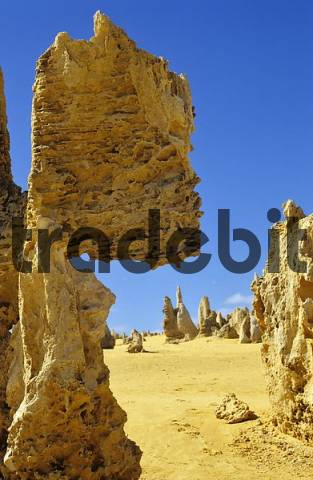stone formation called the Pinnacles in the Kalbarri National Park Western Australia