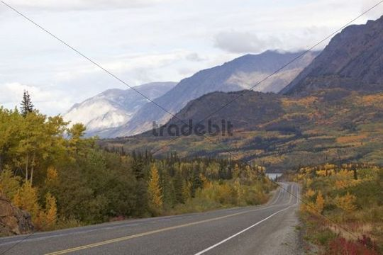 South Klondike Highway, Indian summer, leaves in fall colours, autumn, White Pass, Tagish Lake behind, Yukon Territory, Canada