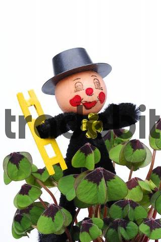 chimney sweep as a good luck charm with clovers