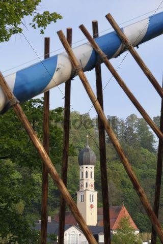 Parish church of St. Andreas, raising the maypole, Wolfratshausen, Upper Bavaria, Bavaria, Germany, Europe