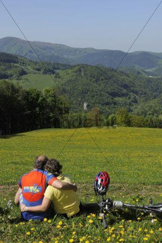 Mountain bikers on their way to Jagasitz, behind the Steinwandgraben valley, Lower Austria, Austria, Europe