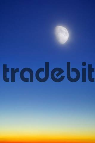 evening sky with moon download pictures graphics