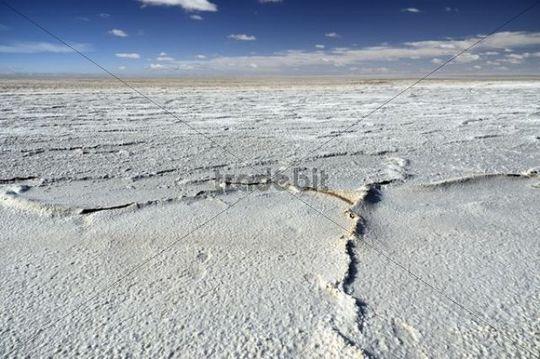 Salt lake Chott el Jerid, Southern Tunisia, Tunisia, Maghreb, North Africa, Africa