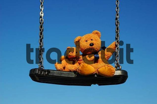 teddy on swing