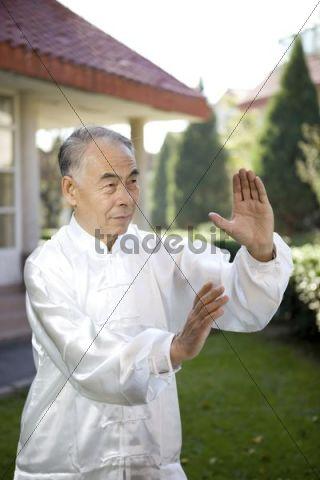 Elderly Asian man practising Taijiquan, Tai chi chuan in a garden, China, Asia