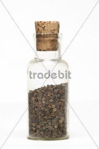 Buckwheat seeds in a glass jar