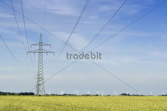 Grid connection and electricity feed-in of onshore wind energy, 110 kV high-voltage electricity line in the Gotteskoog polder near Niebuell, a wind farm at the back, district of North Frisia, Schl