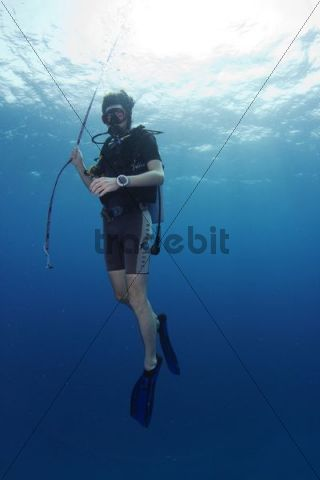 Safety stop for divers, Koen´s Dream Shark Point, Noonu Atoll, Maldives, Indian Ocean