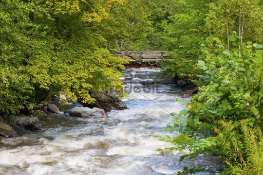 Ruiter Brook, Eastern Townships, Dunkin, Quebec, Canada