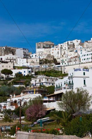 Town of Peschici, Foggia Province, Apulia, Puglia, Gargano, Adriatic Sea, Southern Italy, Italy, Europe