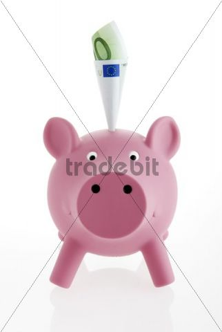 Pink piggy bank with a banknote