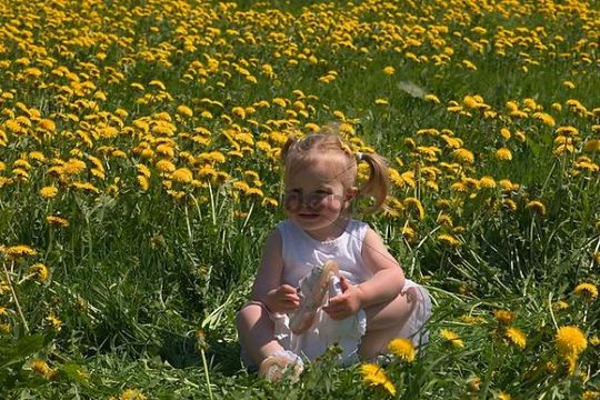 Girl in a meadow with dandelions