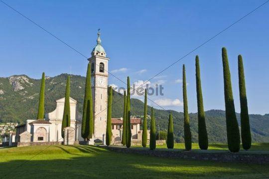 Cypress (Cupressus) trees, Church of Sant Abbondio in Gentilino, near Montagnola, Lugano, Ticino, Switzerland, Europe