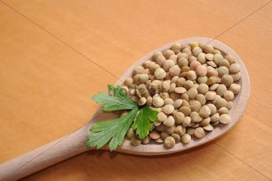 Lentils on a wooden spoon