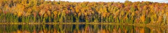 Autumnal panorama, late afternoon sunlight, Bouth Bolton, Quebec, Canada