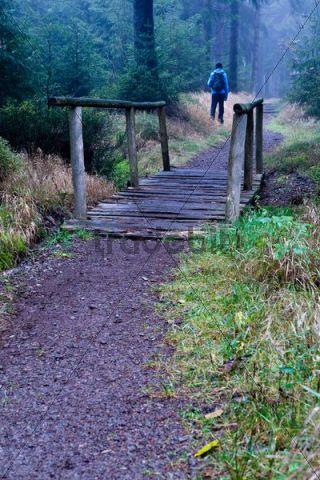 Wooden bridge, hiker, coniferous forest near Masserberg, Thuringian Slate Mountains, Thuringia, Germany, Europe